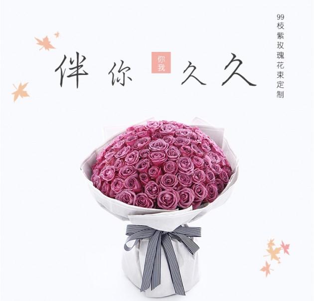 伴你久久-99朵紫玫瑰冷美人