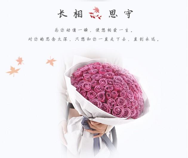 紫玫瑰冷美人