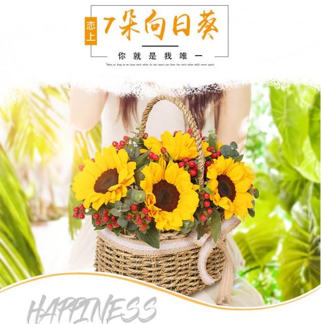 7朵向日葵手提篮